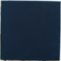 15_pigmenty-platno-25x25-2013.jpg