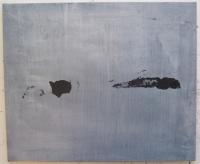 17_5-kaliaty-akryl-pigmenty-pltno-50x60-2013.jpg